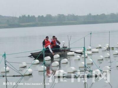 淮河干流首次设立人工鱼巢